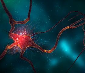 Article Parkinson -Neuron 4